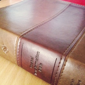 Gospel Transformation Bible